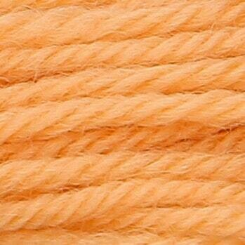 Anchor Tapisserie Wool #09444