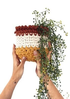 Modelo Plant Pot