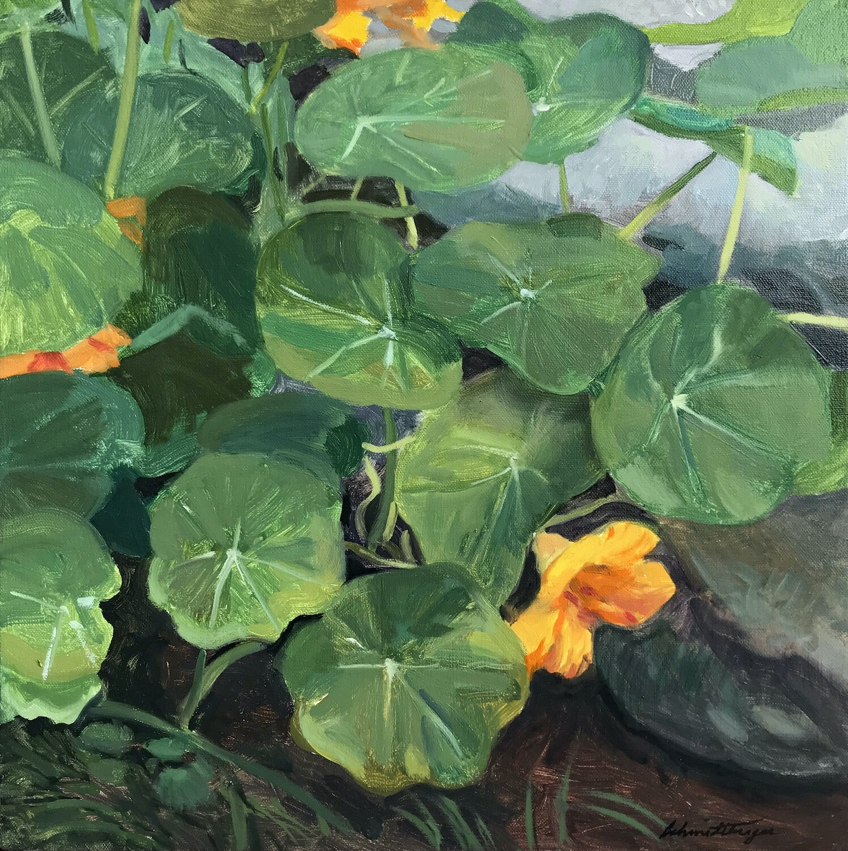 Nasturtiums  Oil on Canvas  14