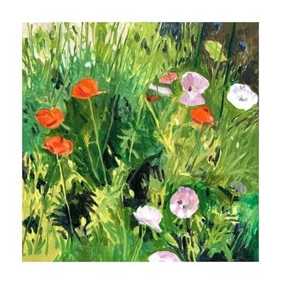 Poppies, Milbridge   oil on panel 16
