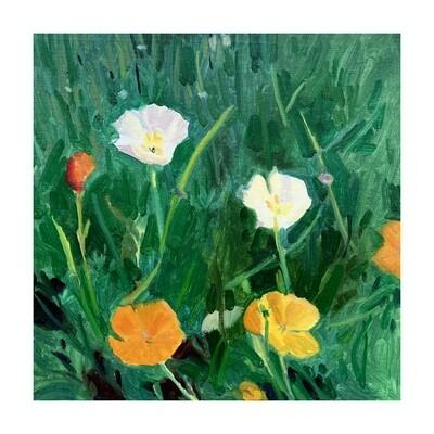 Community Garden Poppies #2  oil on linen panel 10