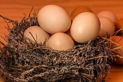 Free Range Eggs - per dozen