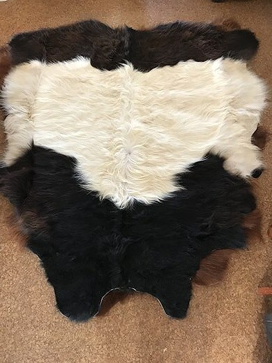 Galloway Cow Hide