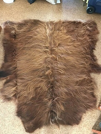 Highland Cow Hide
