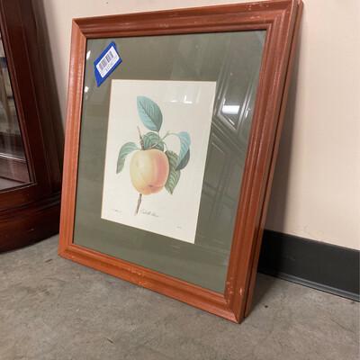 CLEARANCE CALVILLE BLANC P.J.REDLOUIS 12. BESSIN WALL ART