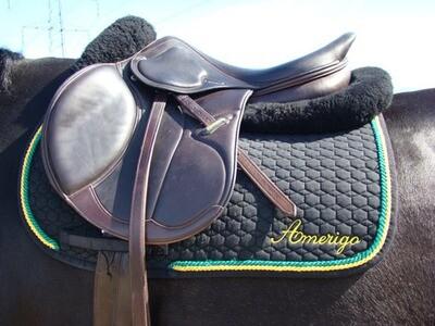Amerigo Saddle Cloth