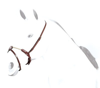 BR41 - Rope Flash Noseband
