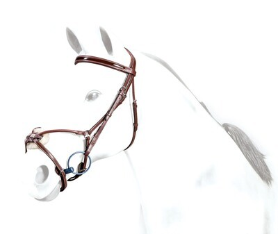 BR33 - Equipe Rolled Grackle Bridle with Patent BB