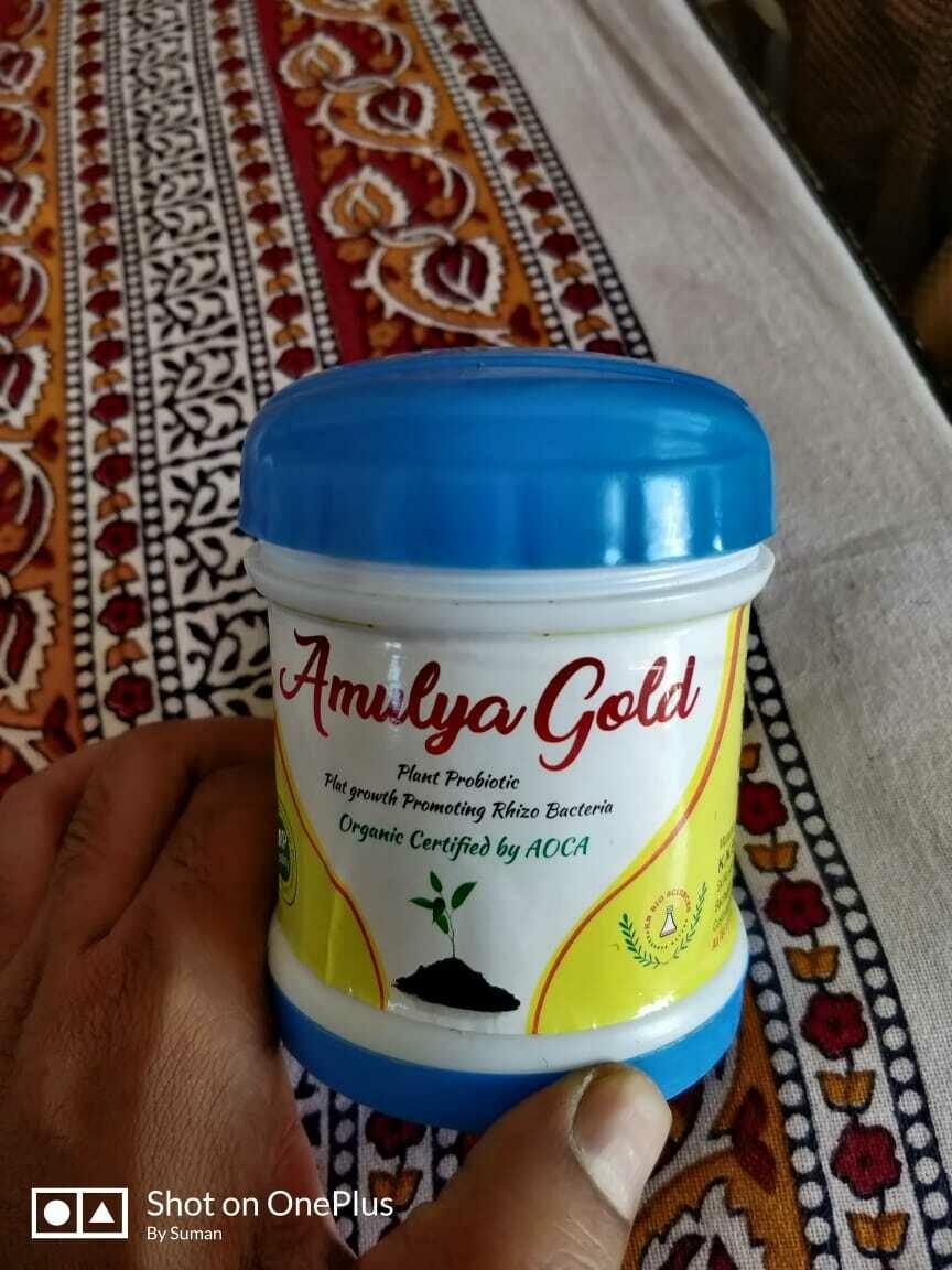 K N biosciences Amulya Gold | PGPR | Healthy Growth of Plant | 100 gms