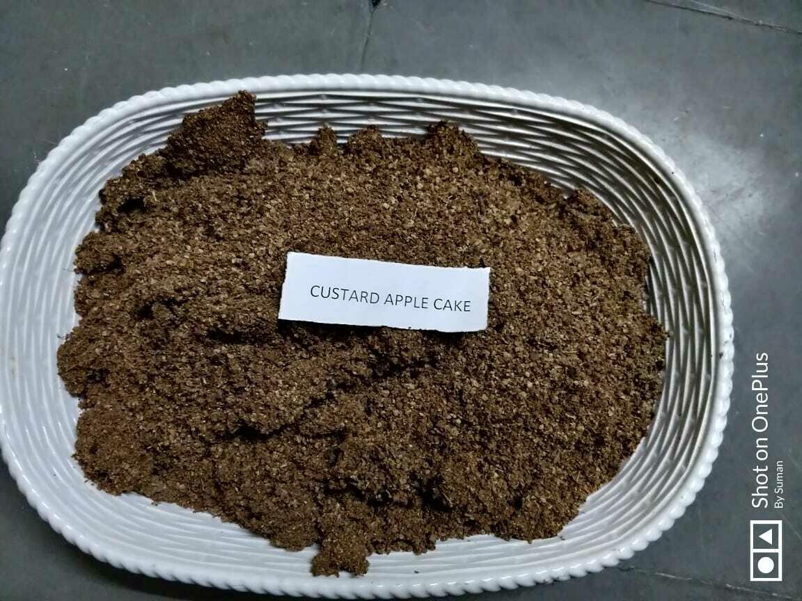 Custard Apple Cake - 1Kg