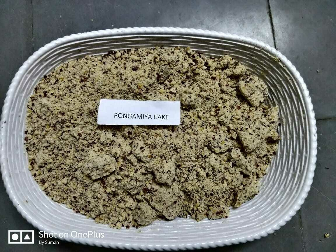 Pongamia Cake -  1Kg