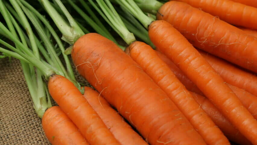 Carrot Seeds (Approximately 50 seeds )