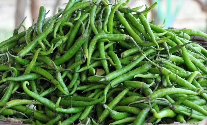 Green Long Chilli