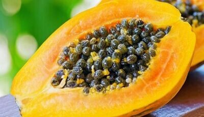 Pappaya Seeds  (Approximately 15 seeds)