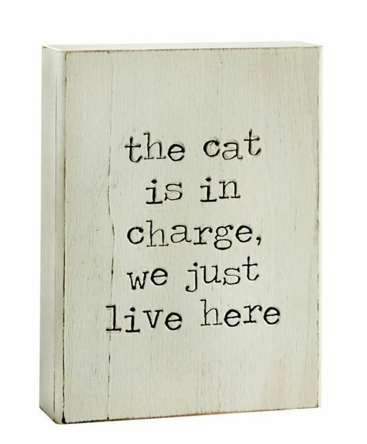 Cat In Charge Plaque