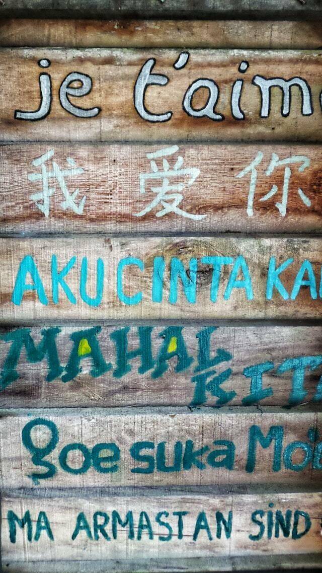 Languages 6 Month Access