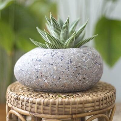 Egg Freckled Pot