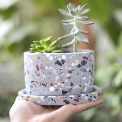 Pepper Freckled Pot