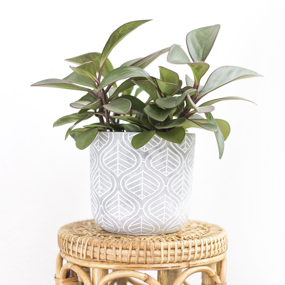 Moroccan Cement Pot