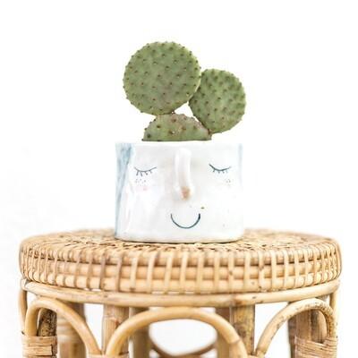 Blissful Betty Friendly Pot