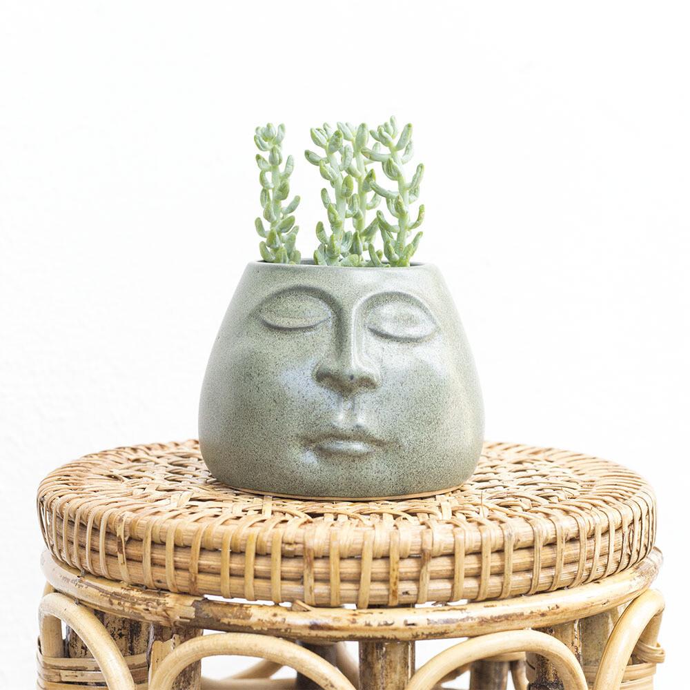 Om Friendly Pot