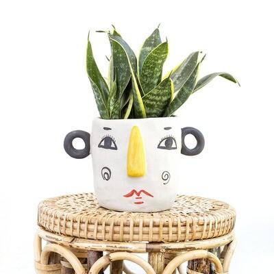 Ms. Frosty The Friendly Pot