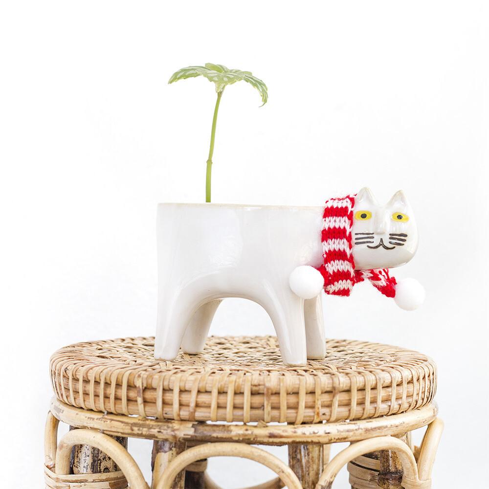 Meowy Christmas Pot