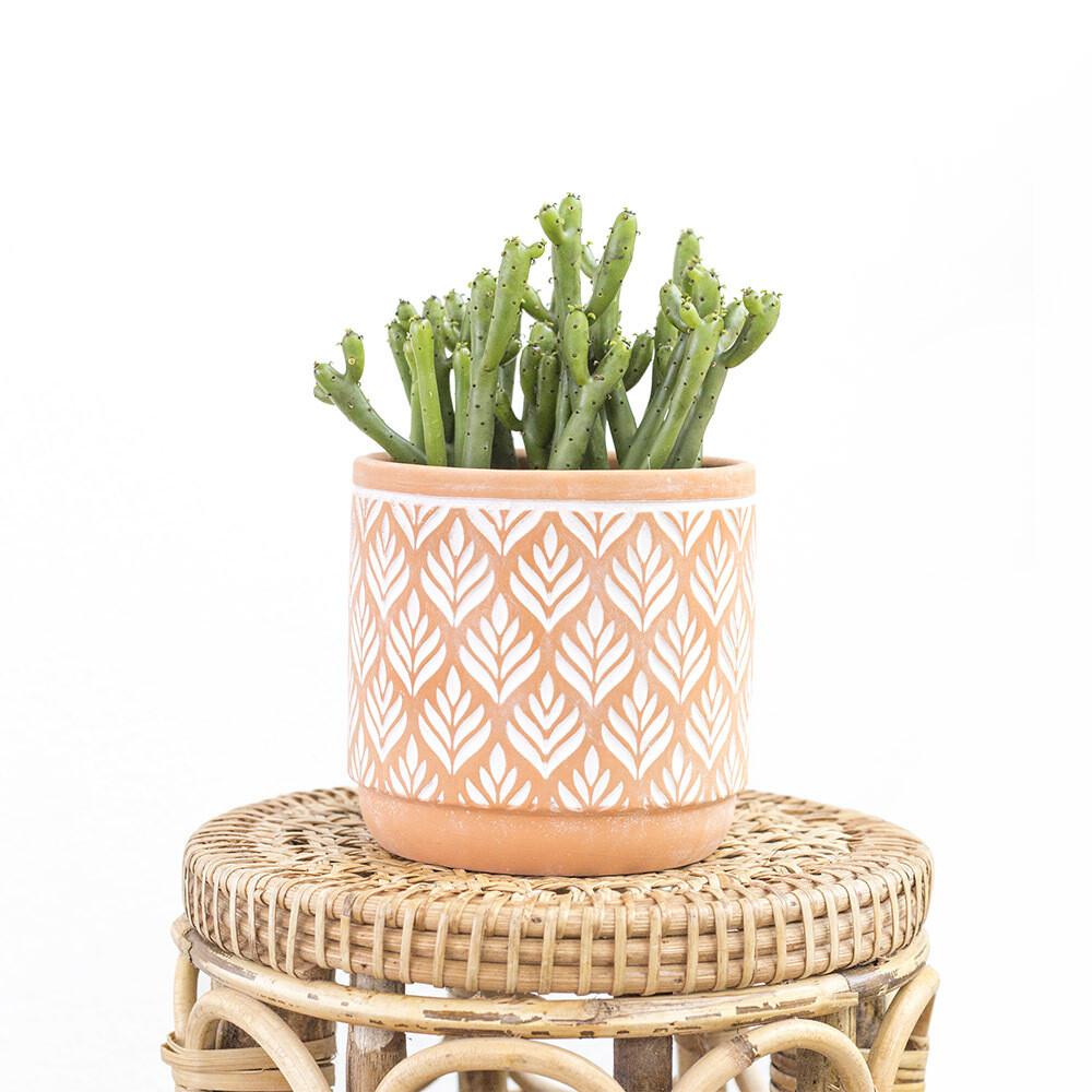 Terracotta Boho Pot