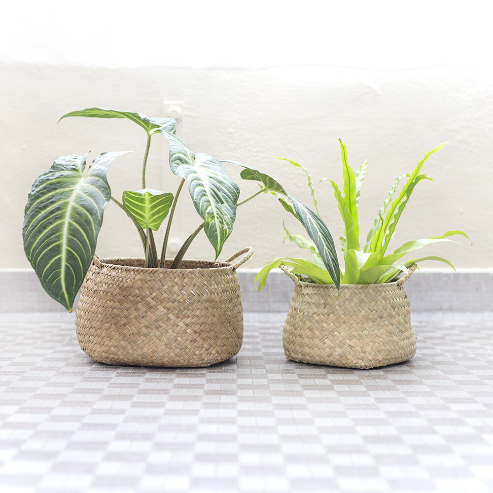 Amara Woven Planter Basket