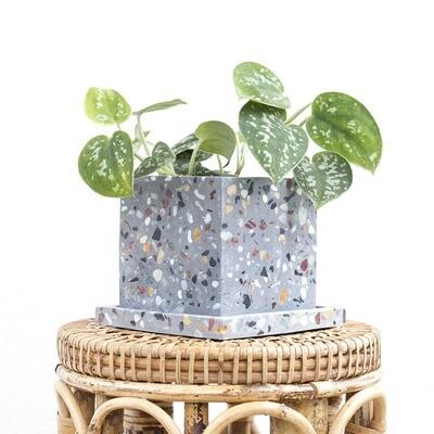 Pepper Freckled Cube Pot