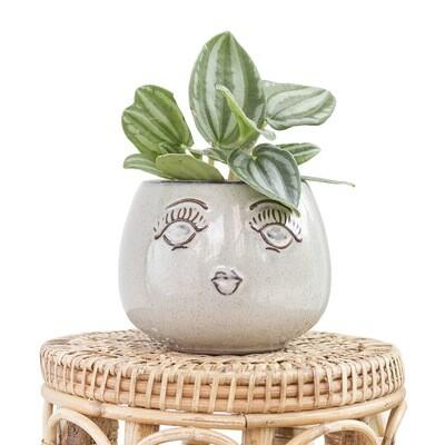 Suzie The Friendly Pot