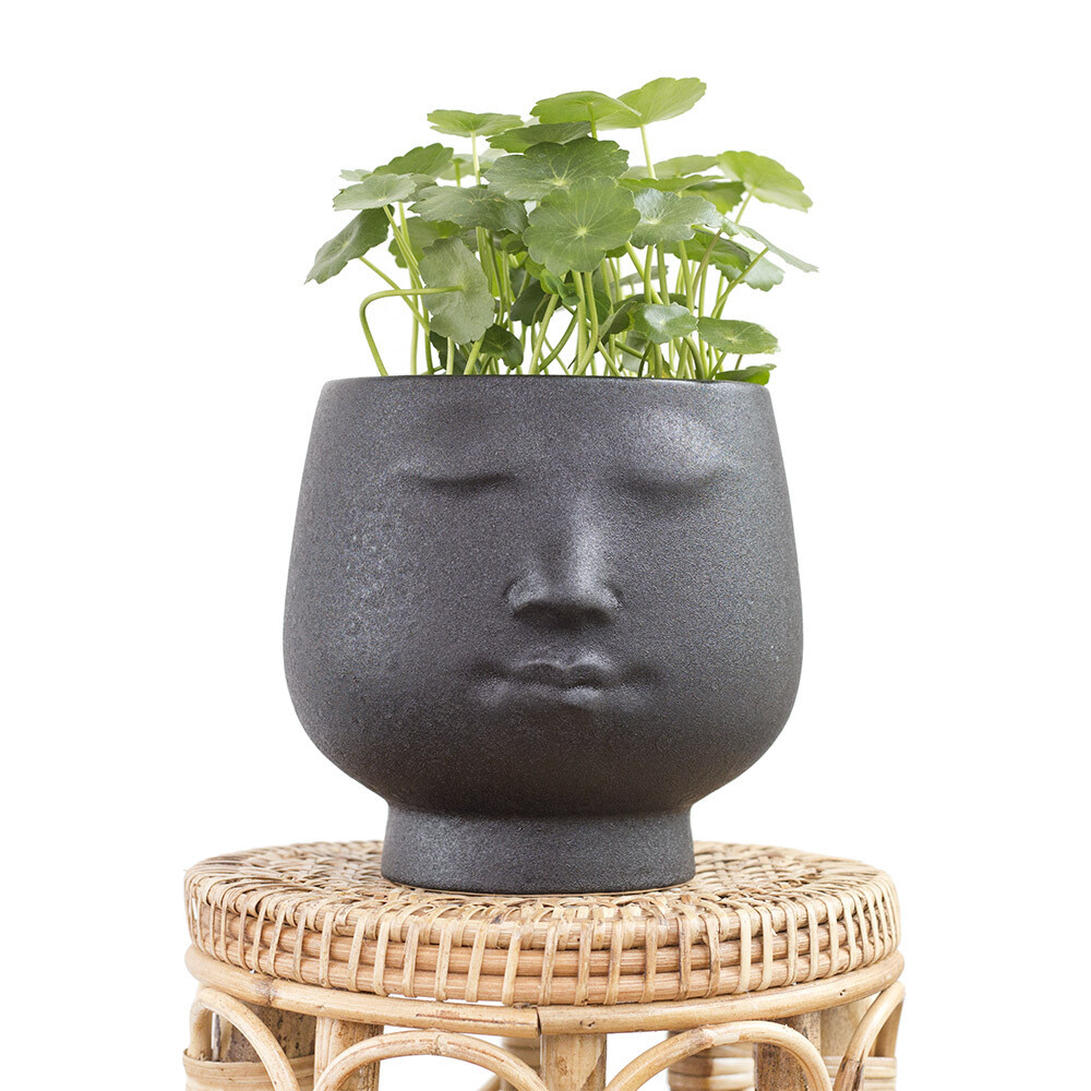 Zen The Friendly Pot