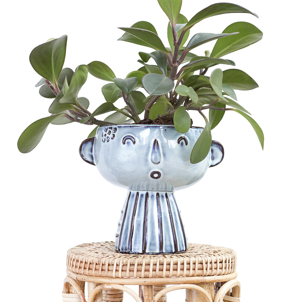 Jill The Friendly Pot