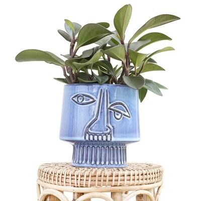 Picasso Pot
