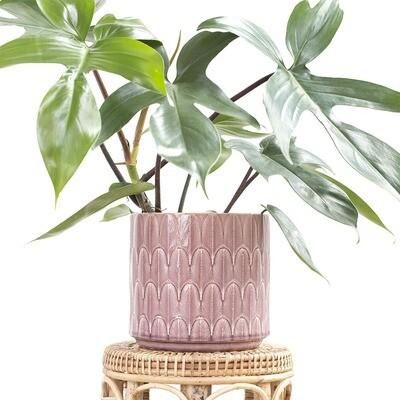 Taffy Feather Pot