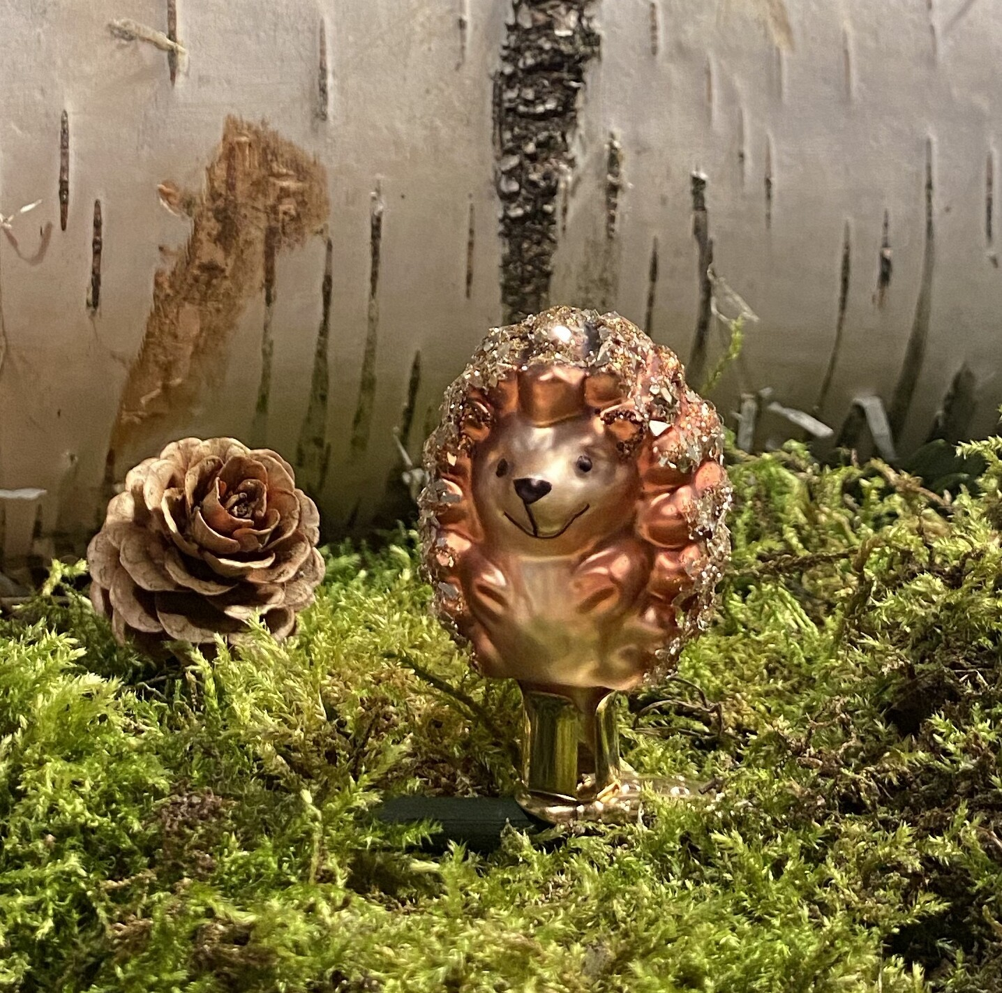 Pindsvin Unge - Magisk Skov