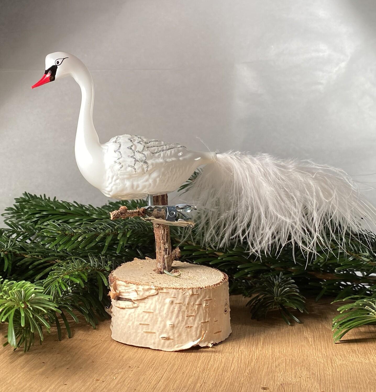 Svane - Danmarks Nationalfugl
