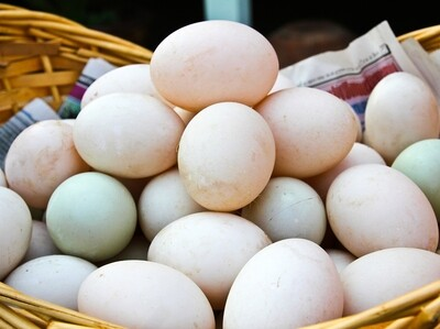 Eggs - Duck (Dozen)