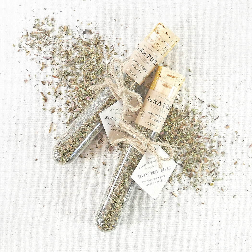 Dandelion - Herbal Tisane - Single Glass Tube