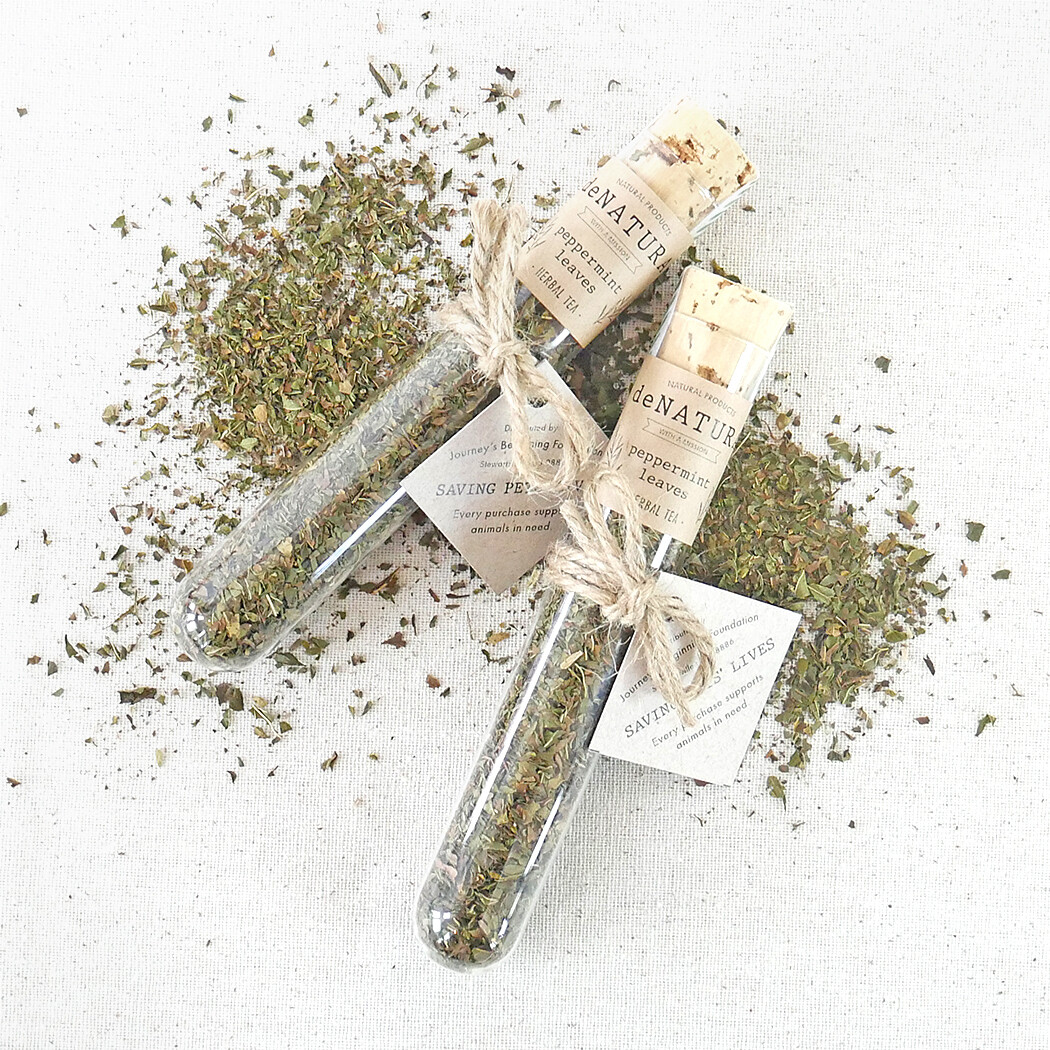 Peppermint - Herbal Tisane - Single Glass Tube