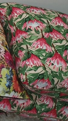 60x60 Protea Scatter cushions
