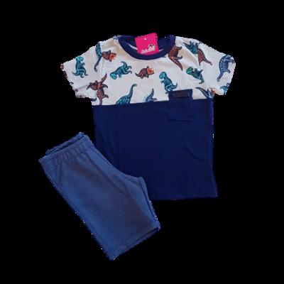 Conjunto Camiseta e Short Moletinho