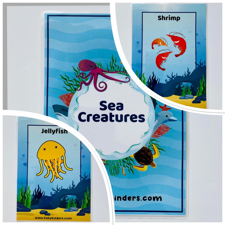 Sea Animals Flash Cards (A5 Size)