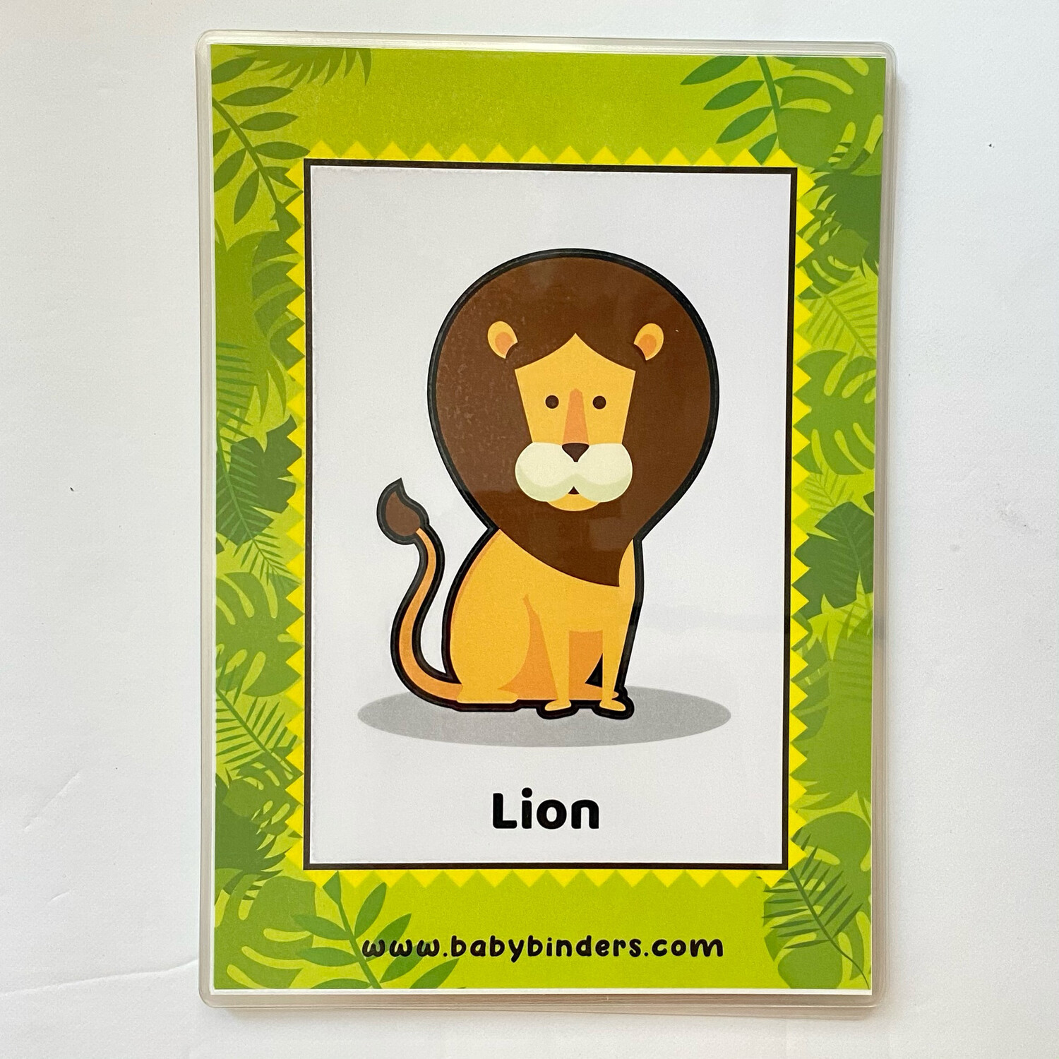 Zoo Animals Flash Cards (A5 Size)