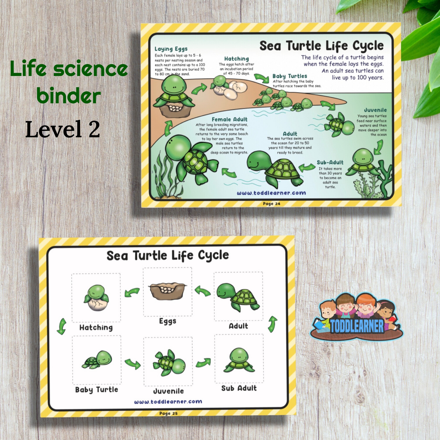 Life Science Learning Binder - Level 2