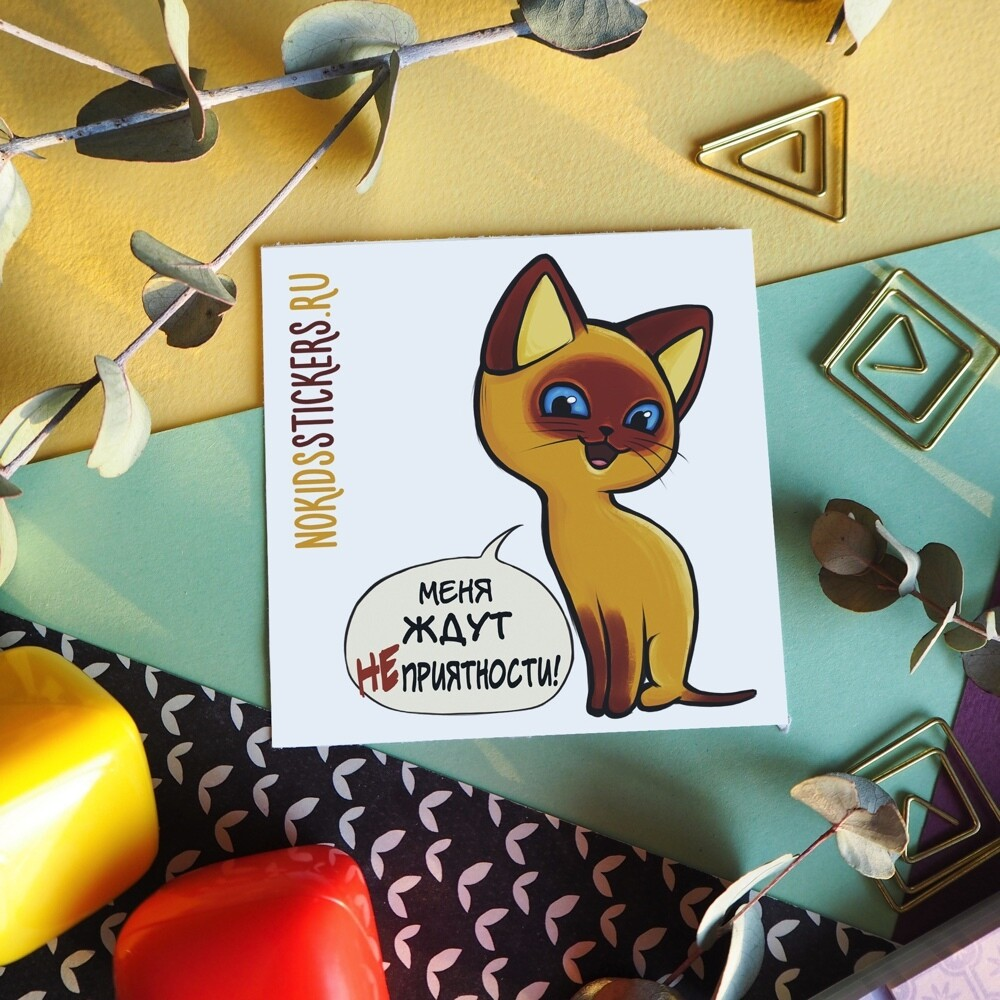 CARD CAT