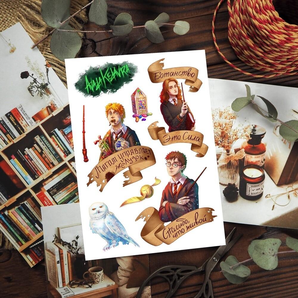 MINI PACK 15 potter
