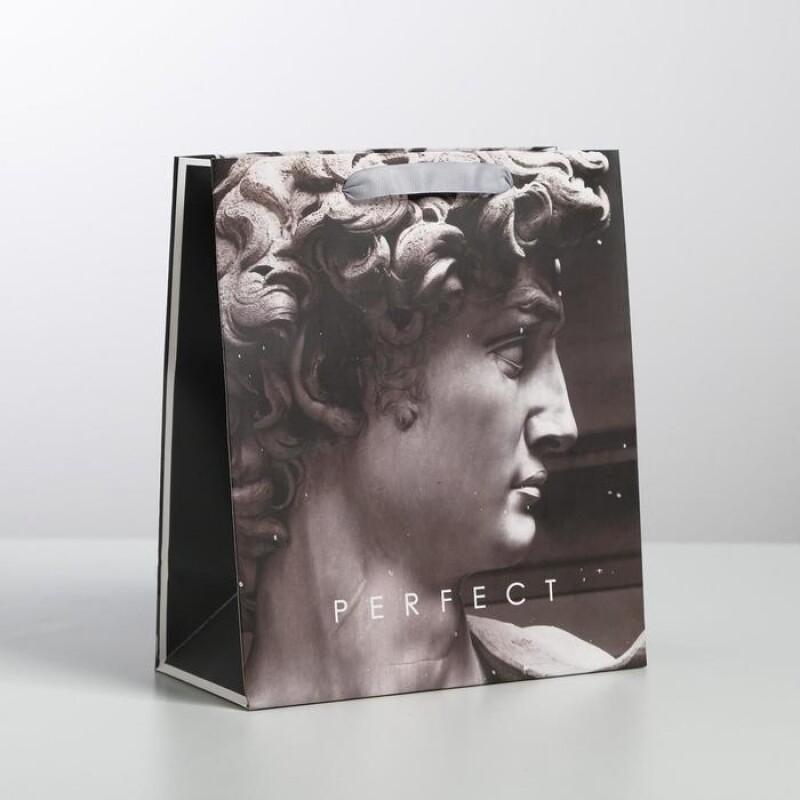 Пакет ламинированный вертикальный Perfect, M 26 × 30 × 9 см   4725239