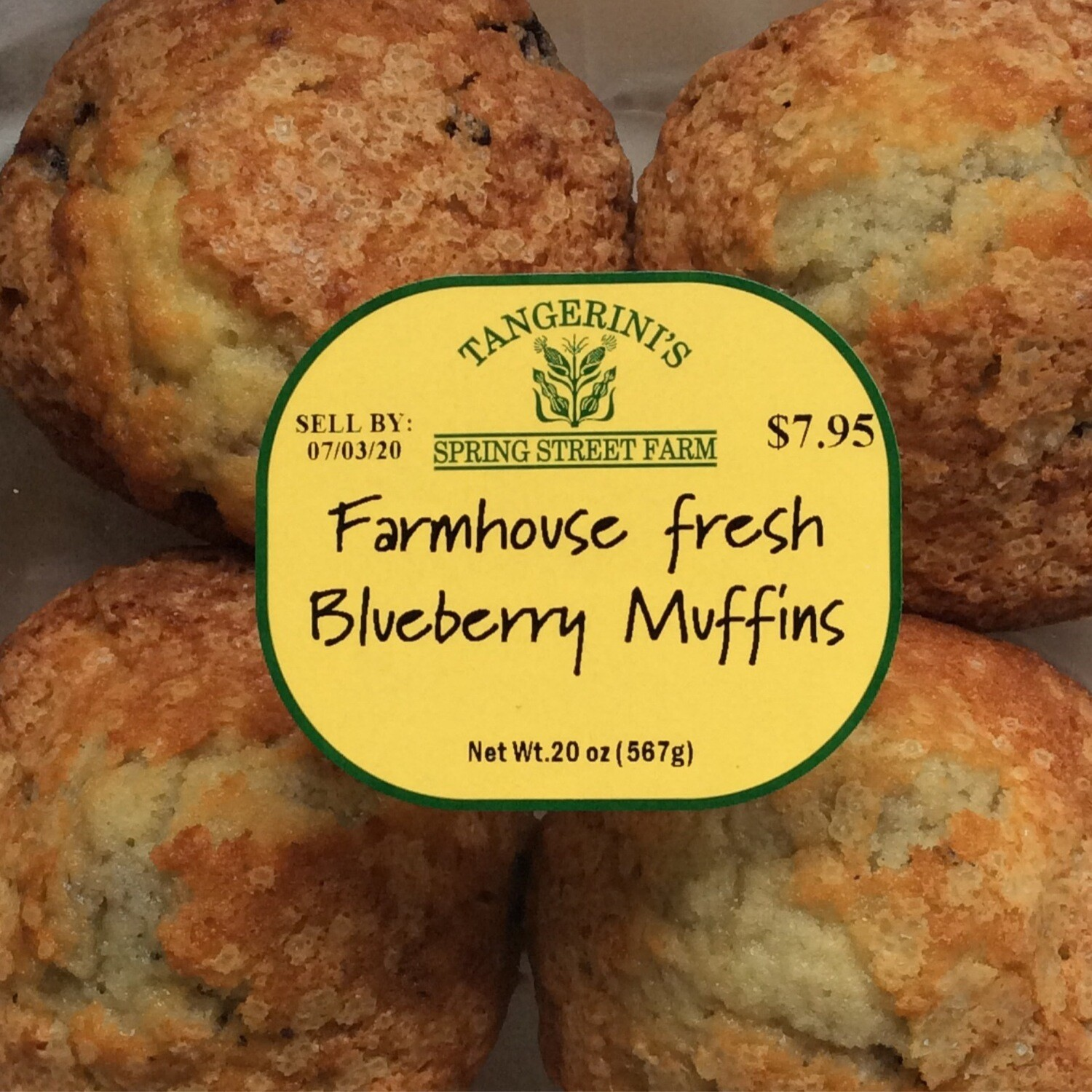 FP Blueberry Muffins | 4 Pack