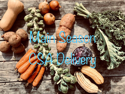 Main Season CSA Delivery or Curbside Pickup | Existing CSA Members Only